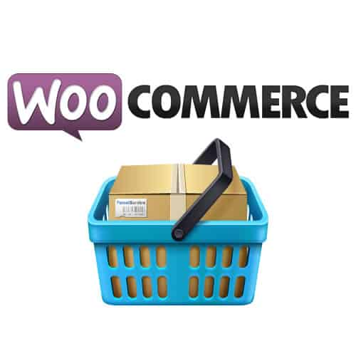 Can You Relay on WooCommerce to Build Your Online Store