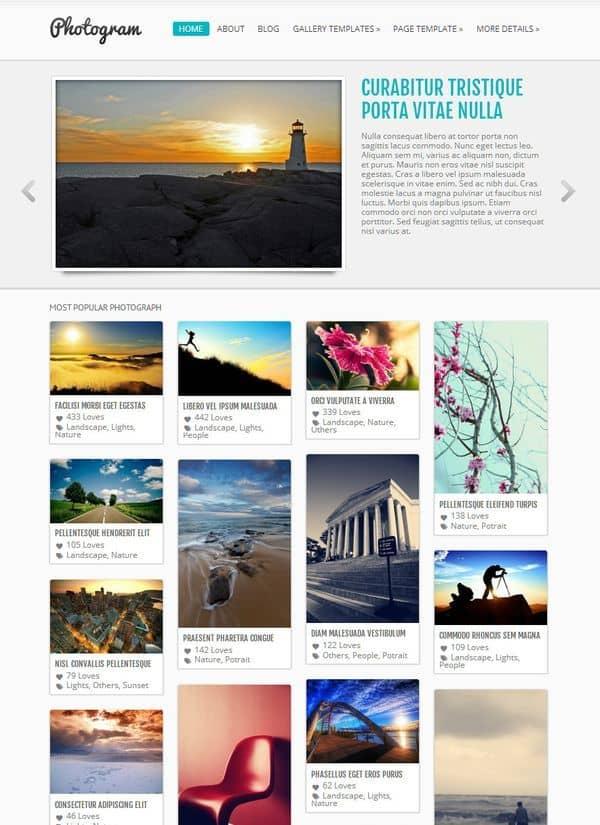 photogram free wp theme